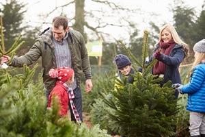 Eine gemeinsame Elternzeit kann die Bindung zwischen Kind und Eltern fördern.