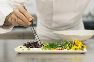 saisonarbeit-gastronomie-ratgeber