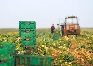 Saisonarbeit: Zu den Voraussetzungen gehört, dass durch eine andere Tätigkeit der Lebensunterhalt sichergestellt werden kann.