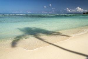 Urlaubsgeltung bei fristloser Kündigung: Erwirtschafteter Urlaub steht dem Arbeitnehmer auch hier zu.